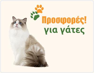 15f497f2a648 Προσφορές. Ταυτότητα για Σκύλο - Γάτα