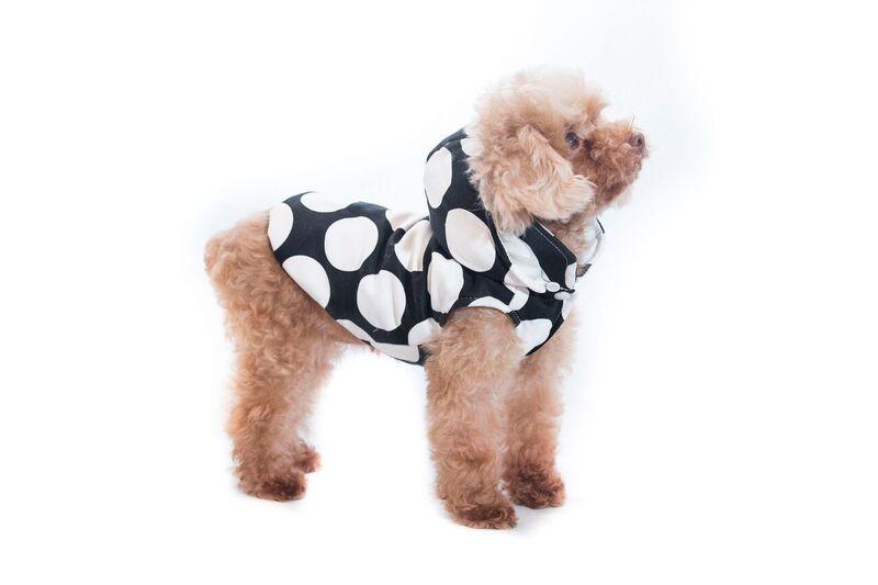 ec56e568fb1 Pet Camelot Dog's Coat Άσπρο/Μαύρο - ΡΟΥΧΑ - Pet4u